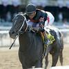 Street Story wins the 2014 Victory Ride Stakes at Belmont Park.<br /> Coglianese Photos/Joe Labozzetta