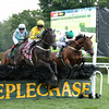 Makari wins the 2014 A. P. Smithwick Memorial Steeplechase Stakes at Saratoga.<br /> Coglianese Photos