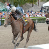 Gamay Noir wins the 2014 Rampart at Gulfstream Park.<br /> Coglianese Photos