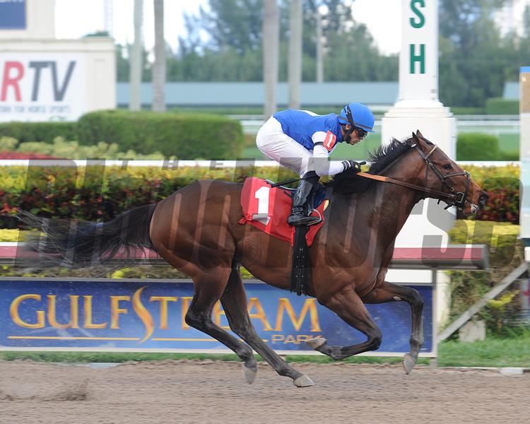 Gambler's Ghost, maiden win at Gulfstream Park, January 1, 2014.<br /> Coglianese Photos