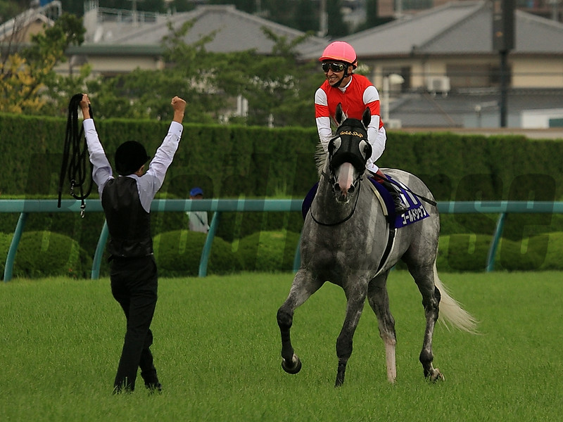 Gold Ship wins the 2014 Takarazuka Kinen.<br /> Naoji Inada Photo