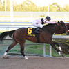 Devil's Cave wins the Sabin Stakes in track record time at Gulfstream Park.<br /> Coglianese Photos