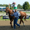 Seek Again wins the 2014 Fourstardave at Saratoga.<br /> Coglianese Photos/Susie Raisher