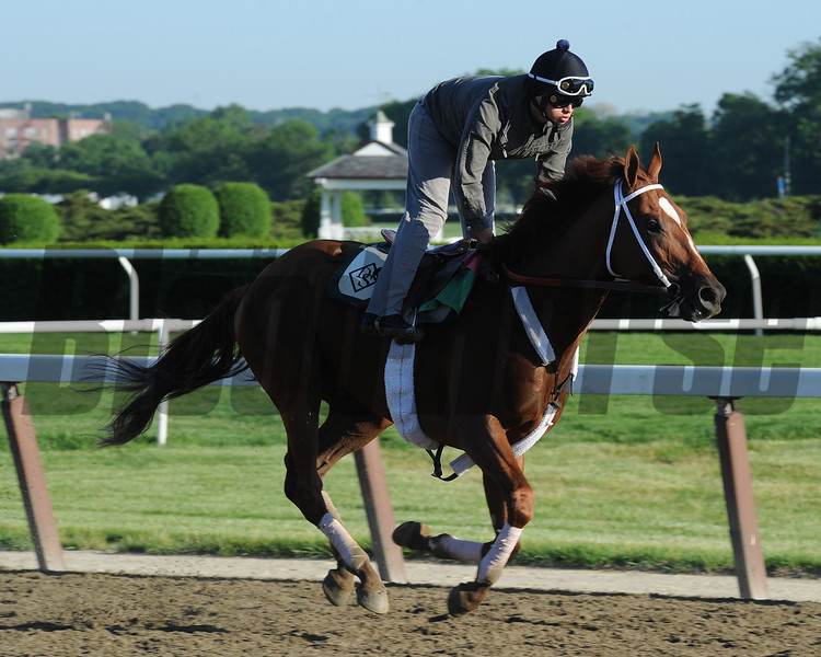 Golden Soul at Belmont Park 6/1/2014<br /> Coglianese Photos