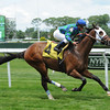 Kharafa wins the 2014 Kingston Stakes.<br /> Coglianese Photos