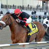 Dads Caps wins the 2014 Carter at Aqueduct.<br /> Coglianese Photos/Chelsea Durand