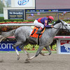 La Madrina - Maiden Win, March 29, 2014 at Gulfstream Park.<br /> Coglianese Photos