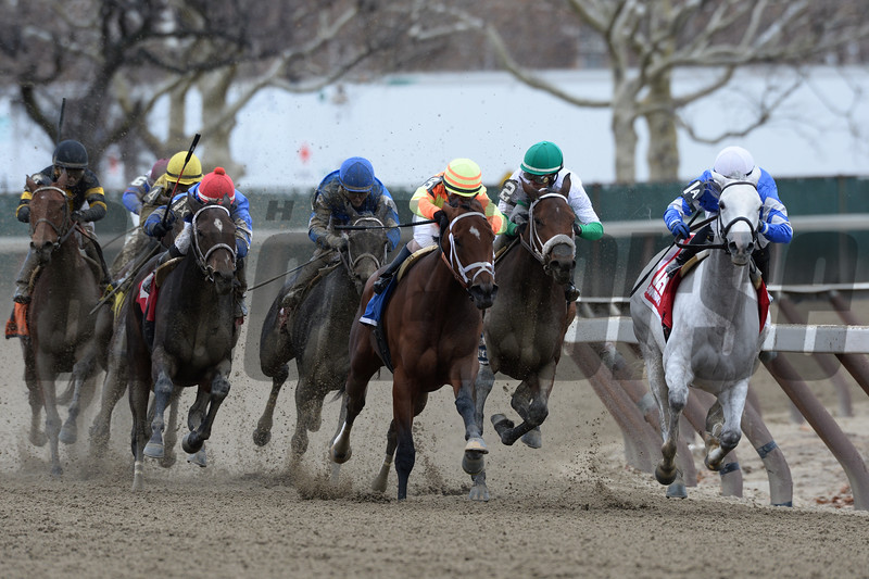 Snowbell wins the 2014 Comely Stakes at Aqueduct.<br /> Coglianese Photos/Joe Labozzetta