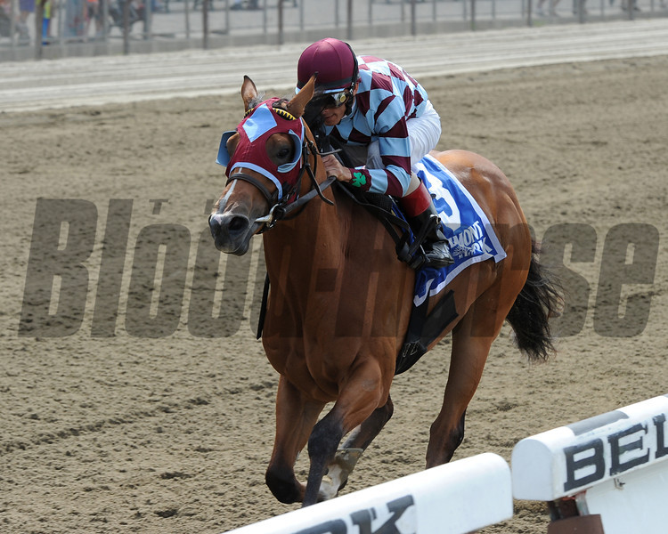 Bessie's Boy wins the 2014 Tremont Stakes at Belmont Stakes.<br /> Coglianese Photos