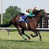 Hardest Core The Cape Henlopen Stakes Delaware Park Chad B. Harmon