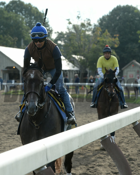 Life in Shambles (front) and Tonalist - Saratoga, August 16, 2014.<br /> Coglianese Photos/Susie Raisher