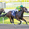 Onlyforyou wins the 2014 Davona Dale at Gulfstream Park.<br /> Coglianese Photos