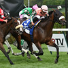 Somali Lemonade wins the 2014 Diana at Saratoga.<br /> Coglianese Photos