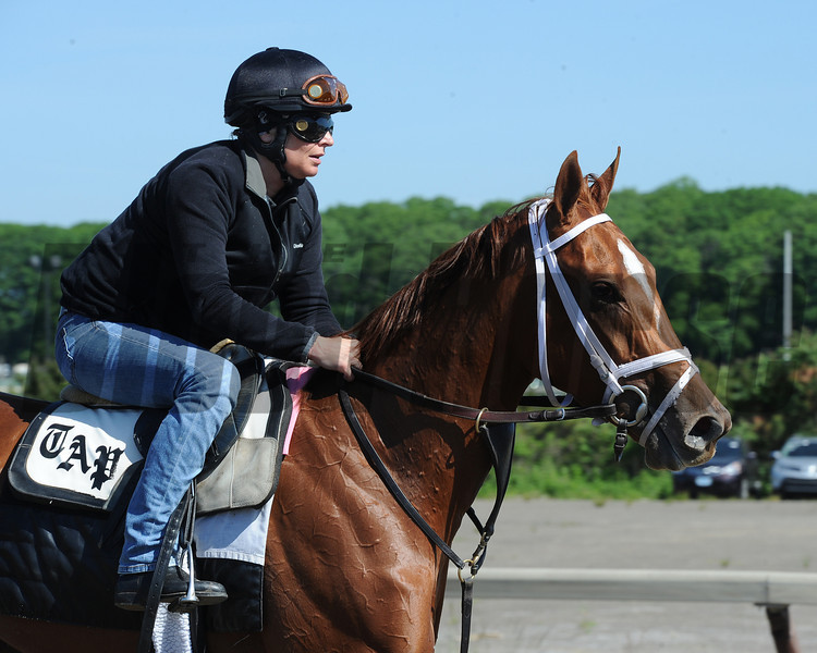My Miss Sophia at Belmont Park 6/1/2014<br /> Coglianese Photos/Susie Raisher