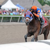 Micromanage wins the 2014 Skip Away at Gulfstream Park.<br /> Coglianese Photos/Kenny Martin