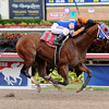 Micromanage wins the 2014 Skip Away at Gulfstream Park.<br /> Coglianese Photos/Leslie Martin