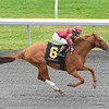 Keeneland Spring 2014; Lexington; KY; photo by Mathea Kelley, Watery Moon, Alan Garcia up, wins $ 50,000 maiden, first start, 4/4/14