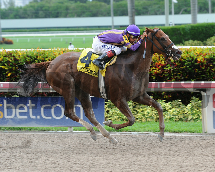 Heart Stealer wins the 2014 Paseana Stakes at Gulfstream Park.<br /> Coglianese Photos/Leslie Martin