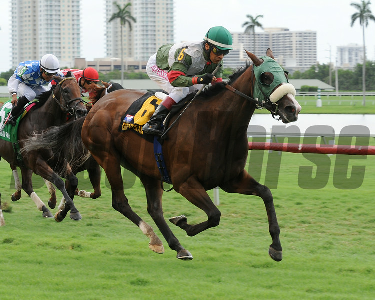 Madame Giry wins the 2014 Bob Umphrey Turf Sprint Stakes at Gulfstream Park. <br /> Coglianese Photos/Lauren King