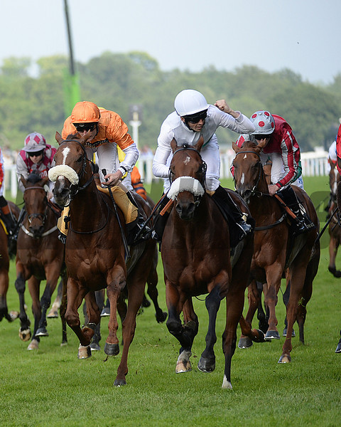 Born in Bombay, David Probert up, wins the Britannia Stakes , Royal Ascot, Ascot Race Course, England, 6/19/14 photo by Mathea Kelley