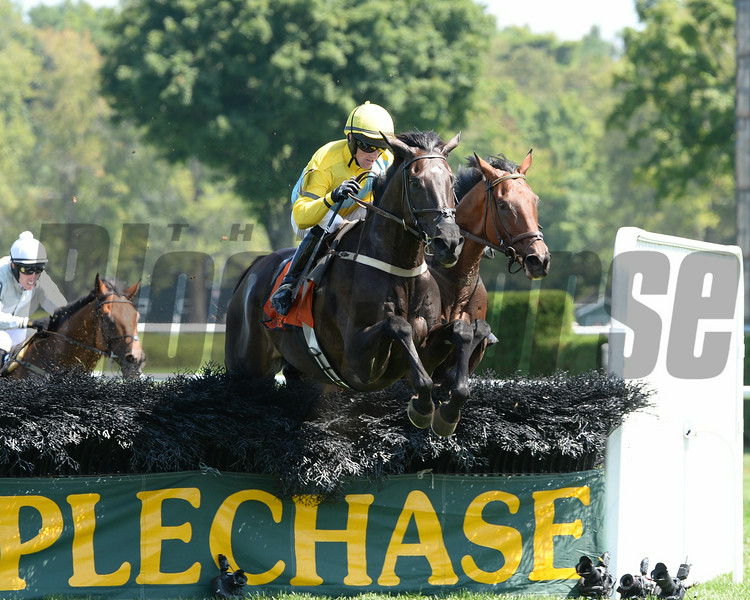 Demonstrative wins the New York Turf Writers Cup Stakes (NSA-I) at Saratoga 8/25/2014.<br /> Coglianese Photos/Chelsea Durand
