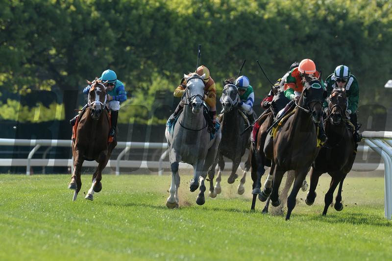 Cabo Cat wins the 2014 Manila Stakes at Belmont Park.<br /> Coglianese Photos/Joe Labozzetta