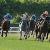 Cabo Cat wins the 2014 Manila Stakes at Belmont Park.<br /> Coglianese Photos/Joe Labozzetta