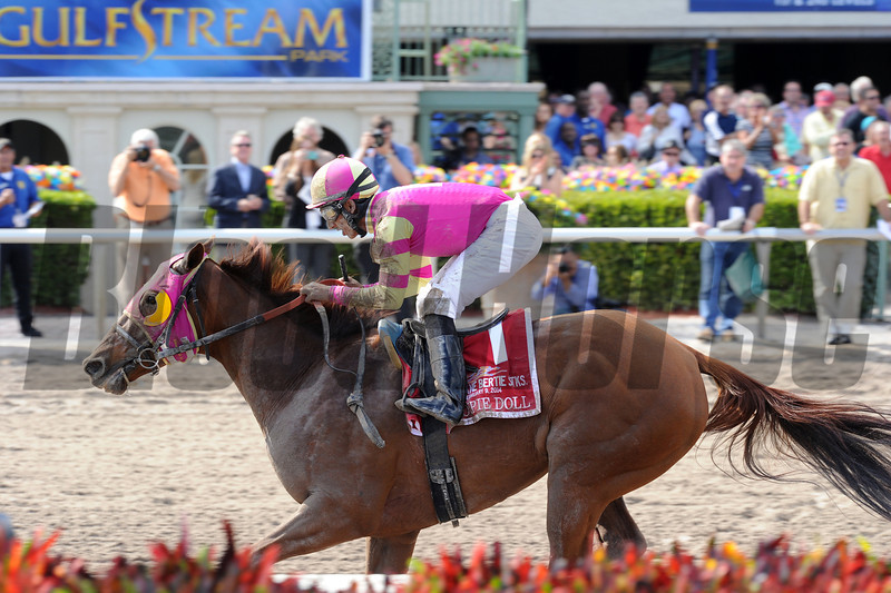 Groupie Doll wins the Hurricane Bertie Stakes 2/9/2014.<br /> Coglianese Photos/Lauren King