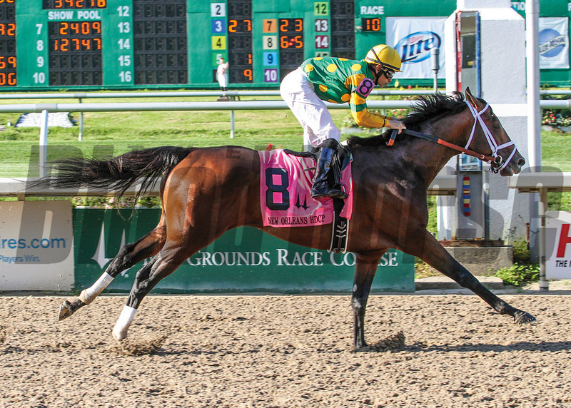 3/29/2014  -  Palace Malice with Mike Smith aboard captures the New Orleans Handicap at Fair Grounds.  Hodges Photography / Lou Hodges, Jr.