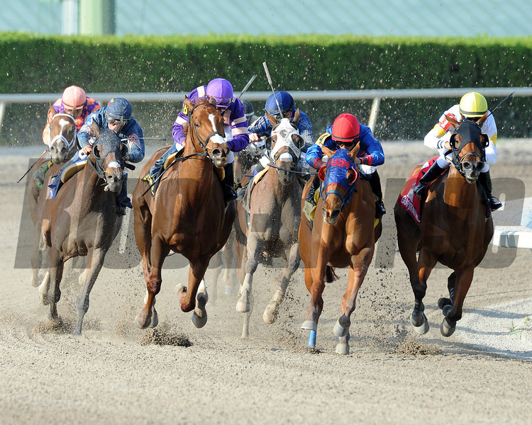 Heart Stealer wins the 2014 Inside Information at Gulfstream Park.<br /> Coglianese Photos/Shannon Spies