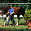 Toast of New York jogs July 3, 2014.<br /> Photo by Susie Raisher/Coglianese Photos