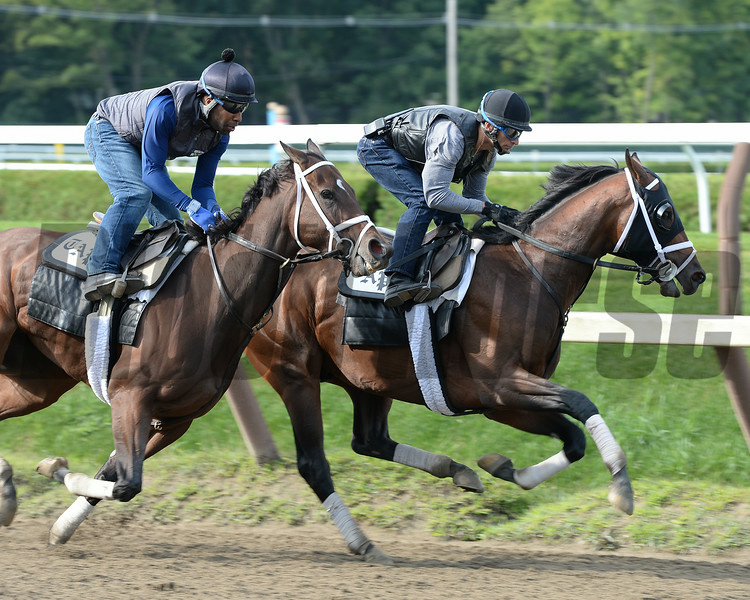 Palace Malice and My Miss Aurelia at Saratoga<br /> Coglianese Photos/Susie Raisher