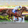 Munnings Sister wins the 2014 Awesome Feather.<br /> Coglianese Photos/Leslie Martin
