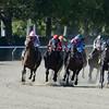 Vyjack wins the 2014 Kelso Stakes at Belmont Park.<br /> Coglianese Photos/Joe Labozzetta