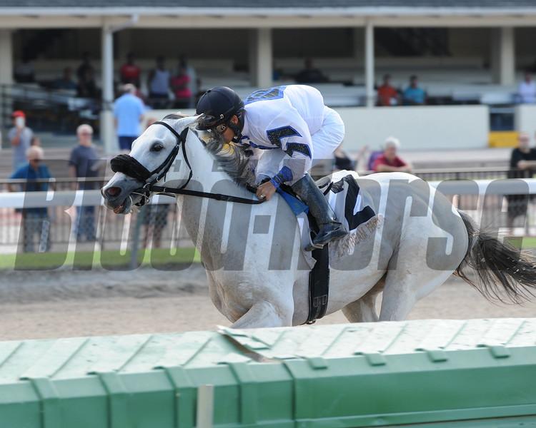 Mr. Jordan wins the 2014 Juvenile Sprint Stakes at Gulfstream Park West.<br /> Coglianese Photos