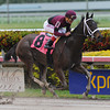 Jane of All Trades - AOC March 6, 2015 Gulfstream Park. <br /> Coglianese Photos