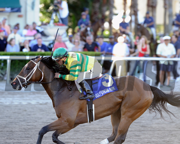 Onlyforyou wins the 2014 Davona Dale at Gulfstream Park. <br /> Coglianese Photos/Lauren King