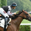 Daring Dancer wins the 2014 Lake George Stakes at Saratoga.<br /> Coglianese Photos