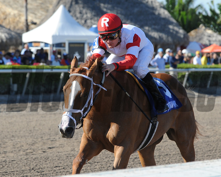 Thank You Marylou wins the Any Limit S. at Gulfstream Park March 9, 2014.<br /> Coglianese Photos/Kenny Martin