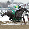 Gracer wins the 2014 Dearly Precious Stakes at Aqueduct.<br /> Coglianese Photos/Chelsea Durand