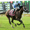 Sayaad wins the 2014 Forbidden Apple Stakes at Belmont Park.<br /> Coglianese Photos