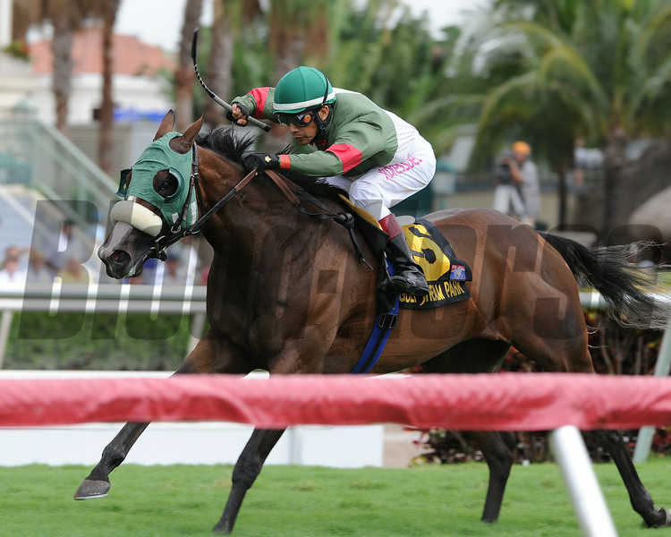 Madame Giry wins the 2014 Bob Umphrey Turf Sprint Stakes at Gulfstream Park. <br /> Coglianese Photos/Kenny Martin