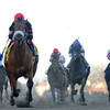 Dads Caps wins the 2014 Carter at Aqueduct.<br /> Coglianese Photos