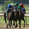7/5/2014  Running in deep stretch at Louisiana Downs, 3 horses manage the unsual feat of having all 12 hooves off the ground at the same time. In this open company maiden special weight race the horses are all in the same stride with their ears  in the same position. The winner was the outside horse (#5) Pitcher. Lynn Roberts / Hodges Photography