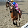 La Verdad wins the 2014 Distaff Handicap at Aqueduct.<br /> Coglianese Photos/Chelsea Durand