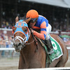Micromanage wins the 2014 Birdstone Stakes. <br /> Coglianese Photos