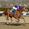 Princess of Sylmar wins the Cat Cay Stakes<br /> Coglianese Photos