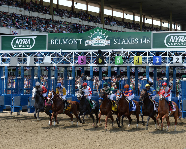 Norumbega wins the 2014 Brooklyn Invitational at Belmont Park.<br /> Coglianese Photos/Chelsea Durand