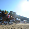 Palace Malice wins the 2014 Met Mile.<br /> Coglianese Photos