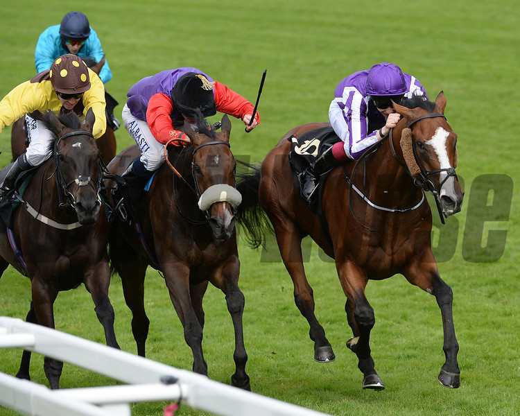 Leading LIght, Joseph Obrien up, wins the Gold Cup, Royal Ascot, Ascot Race Course, England, 6/19/14 photo by Mathea Kelley